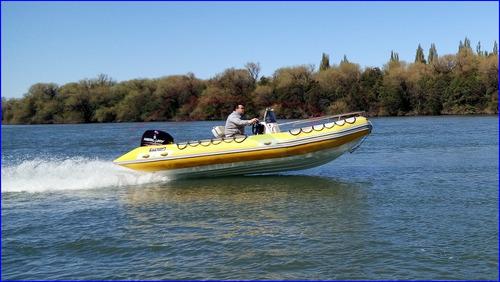 Viking 520 Con Mercury 60 Hp 4 Tiempos Ecologico 0 Horas