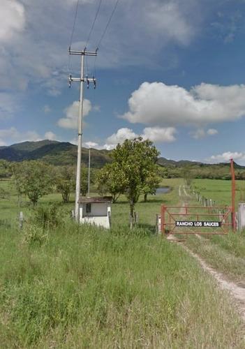 Imagen 1 de 14 de Rancho En El Tuito Jalisco, 21 Ha.