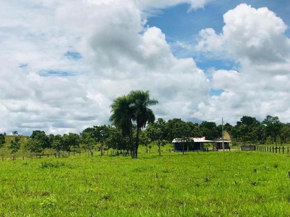 Chácara Para Venda Em Nossa Senhora Do Livramento, Zona Rural - 829740