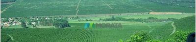 Fazenda 934 Ha Capelinha (mg) - Cod: Mta675