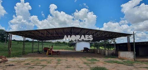 Imagem 1 de 18 de Fazenda Na Região De Bauru À Venda, 118 Alq  Por R$ 15.000.000 - Bauru - Bauru/sp - Fa0016
