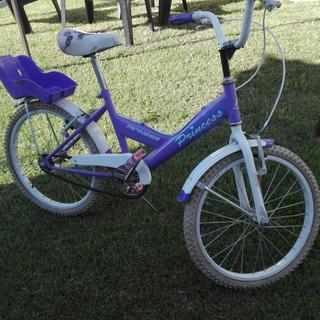 Bicicletas Pioneer