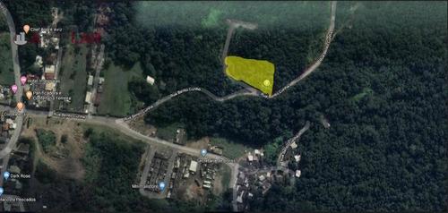 Imagem 1 de 2 de Terreno À Venda, 4500 M² Por R$ 1.490.000,00 - Barra - Balneário Camboriú/sc - Te0082