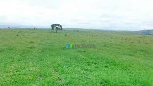 Excelente Fazenda Para Lavoura 1210 Ha - Região Araxá (mg) - Codigo: Fa0024 - Fa0024