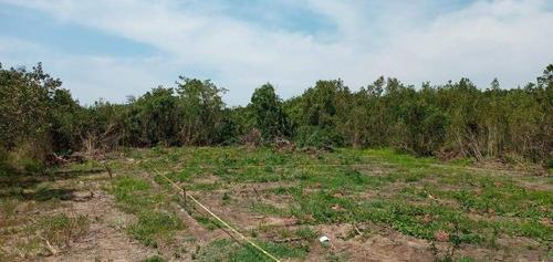 Imagen 1 de 3 de Lote En Exclusiva Zona Residencial Las Arboladas De Aticama, San Blas, Nayarit
