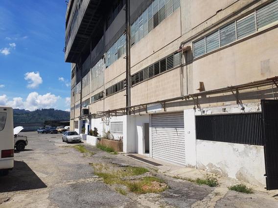#1369 Local 1200m2 Ruiz Pineda