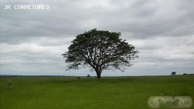 Área Rural Para Venda Em Coronel Sapucaia - Pa18