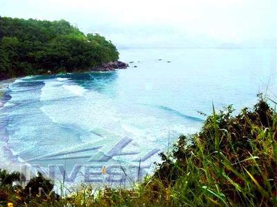 Área Com 94.284m2, Com 300m De Extensão De Praia E Com Área Construída De 900m2. - 234