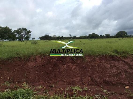 Fazenda A Venda Para Lavoura De Café Em Indianópolis Mg 145, - 326