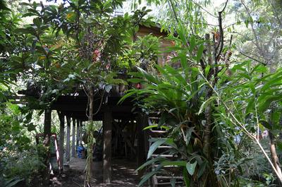 Dueño Vende Casa Delta Tigre 1° Sec A 20