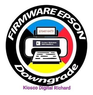 Firmware Impresoras Epson Xp (asistencia Remota)