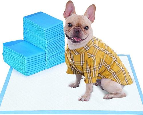 Imagen 1 de 10 de Pañal Para Perros De Piso Entrenamiento Absorbente 50 Unid