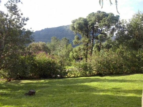 Terreno - Bairro Vale Do Quilombo - Te02317