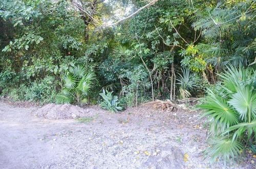 Terreno En La Veleta, Tulum