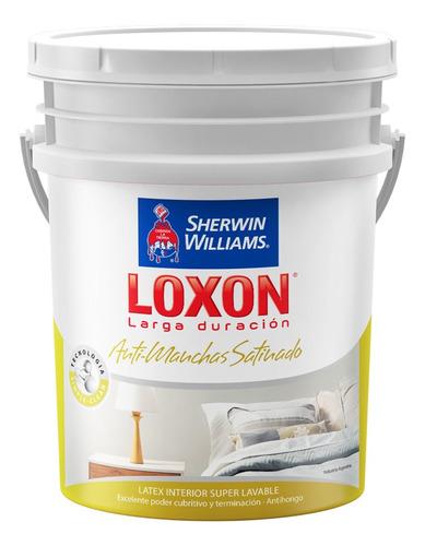 Loxon Latex Antimanchas Int Lavable Sat 20lt 18 Cuotas S/int