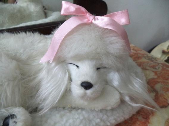 Cachorrinha De Pelucia Que Respira Dormindo Antiga Funciona