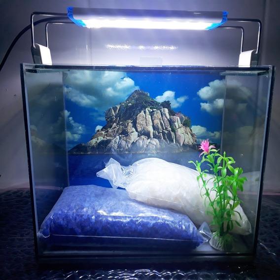 Aquário Com Luminária E Decoração Tam 30 Cm 12 Litros
