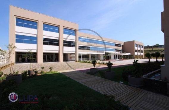 Sala Comercial Para Locação, Swiss Park, Campinas - . - Sa0042