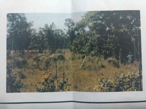 Imagem 1 de 4 de Terreno À Venda, 798 M² Por R$ 25.000,00 - Zona Rural - Eldorado Do Sul/rs - Te0404