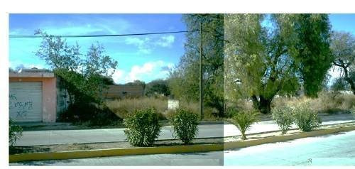 Imagen 1 de 6 de Se Vende Terreno Baldío , Zacatecas