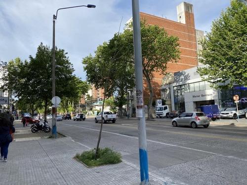 5 Apartamentos A Estrenar - Renta 4.5%