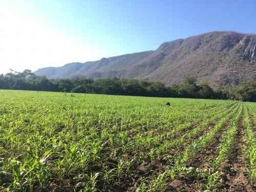 Se Vende Rancho En Coquimatlan, Colima