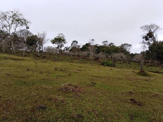 Terrenos / Lotes En Encarnación Paraguay /nueva Alborada