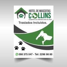 Hotel De Mascotas Collins