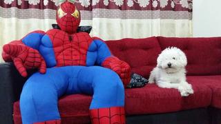 Spiderman Tamaño Real Hombre Araña Ideal Para Fiestas!!!