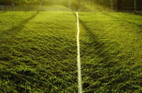 Mangueira Irrigação Microperfurada A Laser Santeno 2 - 100m