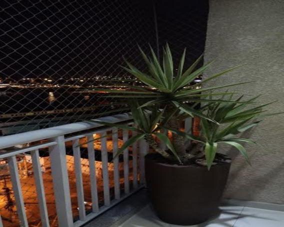 Apartamento Na Rua Manuel Pacheco De Carvalho - Ap00870 - 32899584