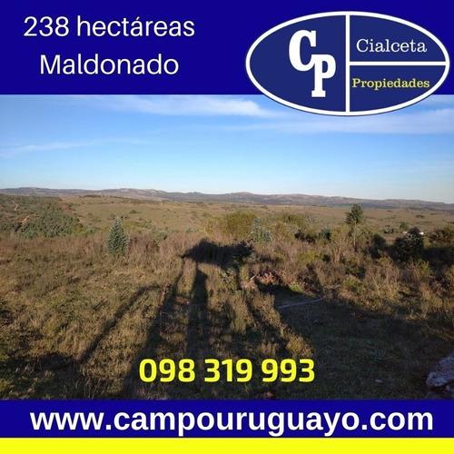 Campo Con Estupenda Casa  En Maldonado