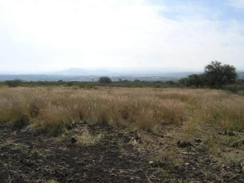 Vende Terreno Carretera # 411 El Progreso Correg. Qro. 5has