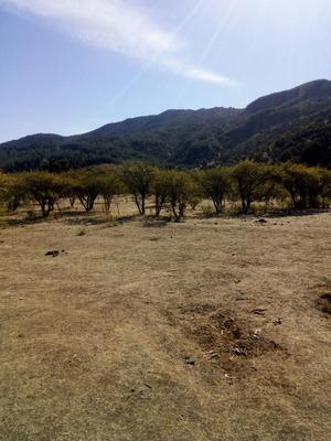 Venta De Terrenos En San Rafael, Precio Remate.