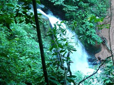 Costa Rica Farm; Coffee, Development, Tourism, Retirement
