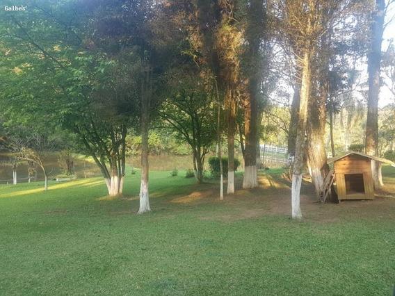 Chácara Para Venda Em Santo André, Acampamento Anchieta(bloco A), 2 Dormitórios, 3 Banheiros, 15 Vagas - 2000/2495_1-1278684