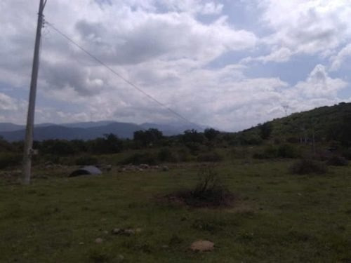 Terreno Venta Zacoalco De Torres