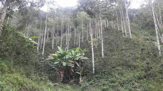Finca En La Vega Cundinamarca