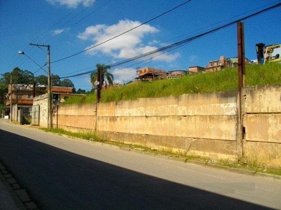 Terreno Em Jardim Colibri, Cotia/sp De 0m² Para Locação R$ 10.000,00/mes - Te320831