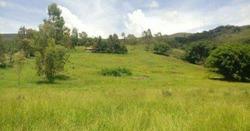 Sitio Em Baependi Com 6.0 Ha Em Baependi Sul De Minas . Muito Bom De Água , Tem Nascentes E Um Rio No Fundo . - 2886