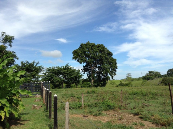 43 Hectáreas Vía Planeta Rica-buenavista