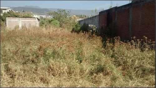 5 De Mayo Atizapan Venta Terreno Estado De Mexico