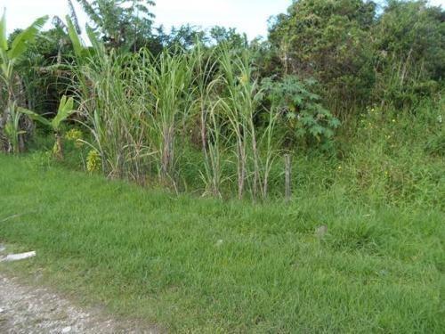 Terreno No Litoral Sul, Com 300 M², Em Itanhaém/sp 2846-pc