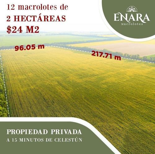 Imagen 1 de 7 de Venta De Macrolotes | Enara | Celestun