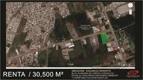 Terreno Comercial En Renta En El Ranchito La Costerita