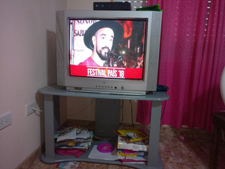 Tv 29 Pulgadas Usado + Mesa + Control Remoto