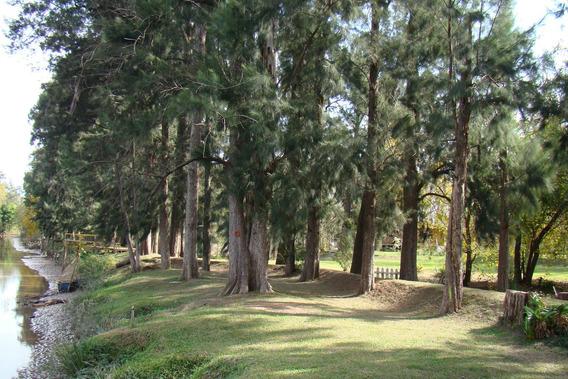 Arroyo Guayraca,delta,tigre,isla X 3 Casas