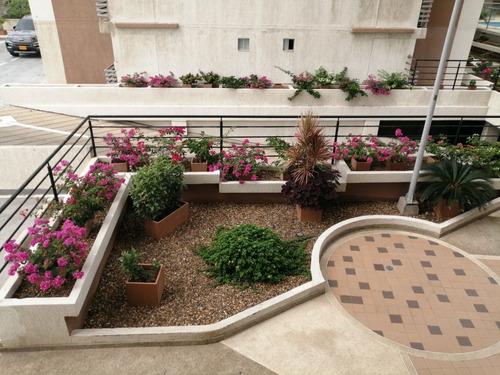 Imagen 1 de 12 de Apartamento En Arriendo Paraiso #6764629