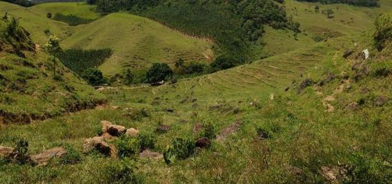 Fazenda Em Rio Calçado, Guarapari/es De 0m² À Venda Por R$ 700.000,00 - Fa199255