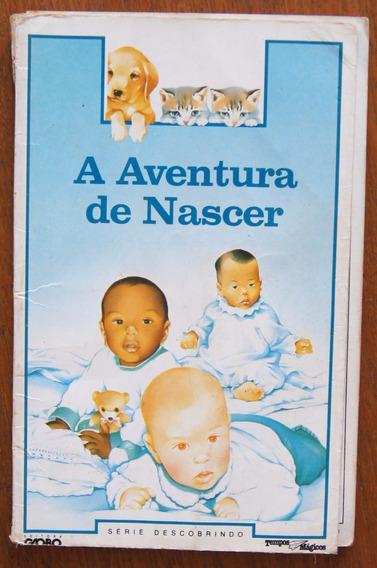 Livro A Aventura De Nascer Série Descobrindo